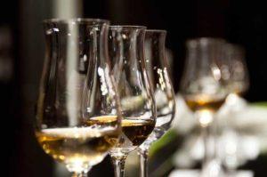 italy-wedding-wine-tasting