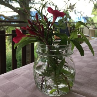 Having guests at home and no flower designers around ... I made very rustic centerpieces using the greenery of the park of the villa.